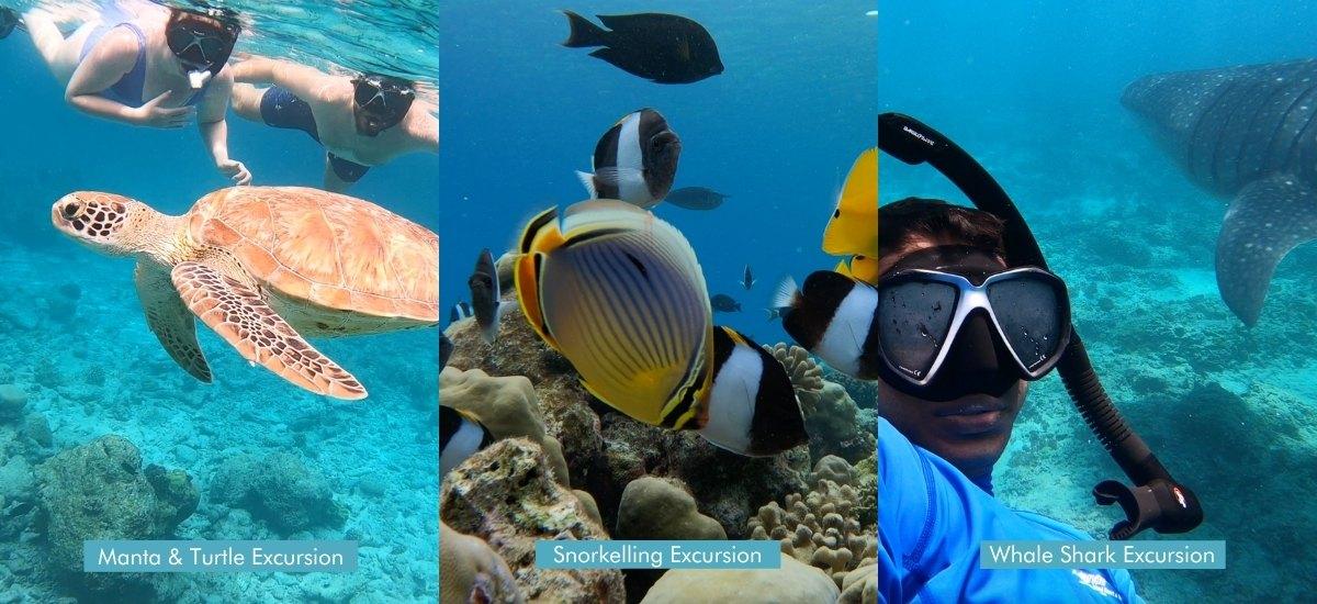 Top Maldives Excursions - Veligandu Island Resort & Spa