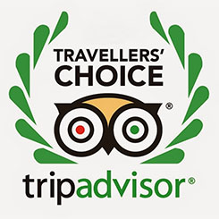 TripAdvisor Travelers' Choice Award, 2013, Worldwide