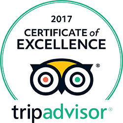 Tripadvisor Certificate Of Excellence Award, 2017, Worldwide