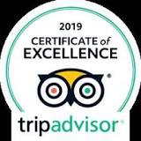 Tripadvisor Certificate Of Excellence Award, 2019, Worldwide